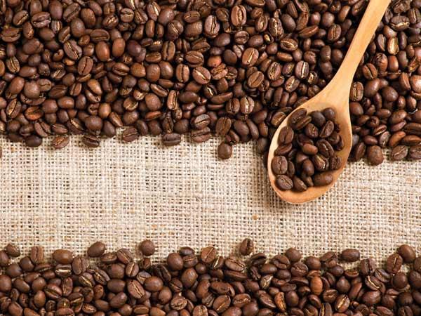 Caffe-gimoka-reggio-emilia