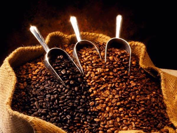 Caffe-in-capsule-modena